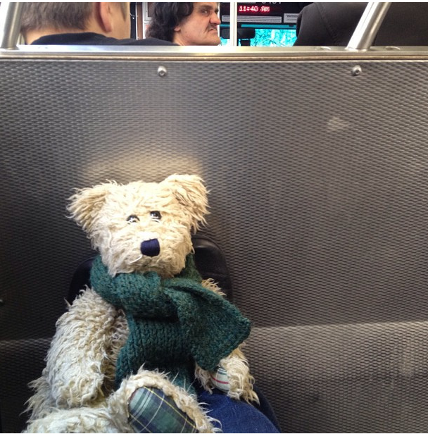 new years bear on muni by cbcastro