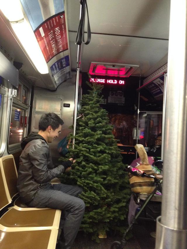 tree_unknown