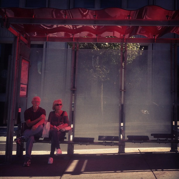 muni shelter by david lytle