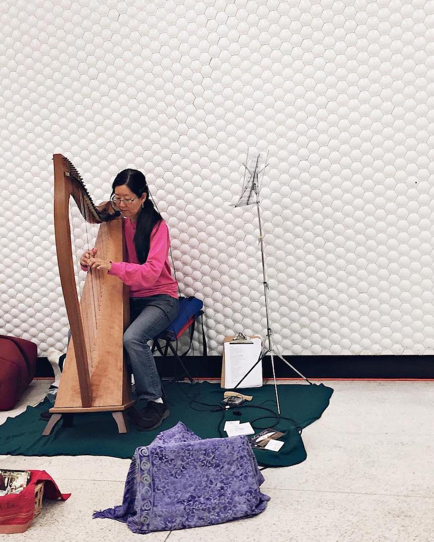 muni station harp