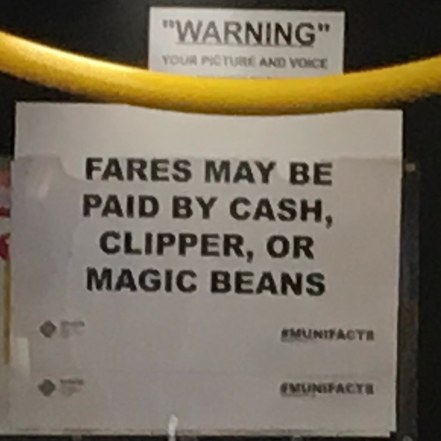 magic_beans-muni